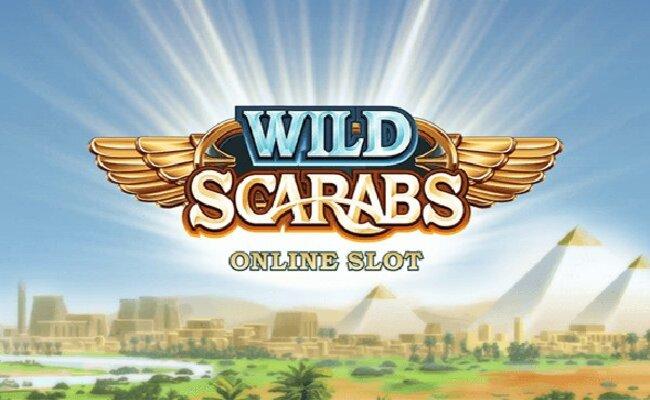รีวิวเกมสล็อต Wild Scarabs